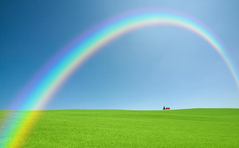 草原に掛かる虹