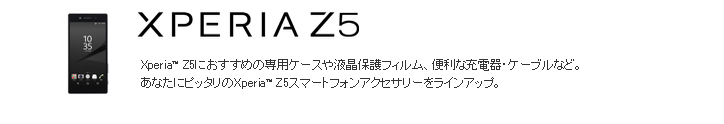 Z5ロゴ.PNG